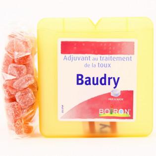BOIRON BAUDRY PATE A SUCER ADJUVANT AU TRAITEMENT DE LA TOUX