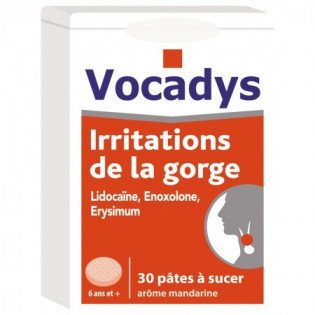VOCADYS IRRITATIONS DE LA GORGE 30 PATES A SUCER AROME MANDARINE
