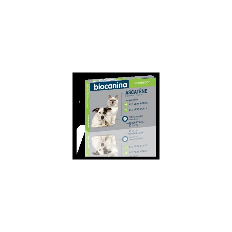 Ascatène vermifuge chiens et chats boîte de 10 cps