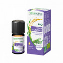 NATURACTIVE BIO Huile essentielle Thym à Linalol 5 ml