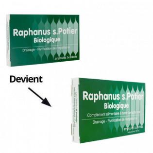 Raphanus S.Potier Biologique 12 ampoules